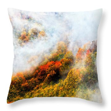Forest In Veil Of Mists Throw Pillow by Evgeni Dinev