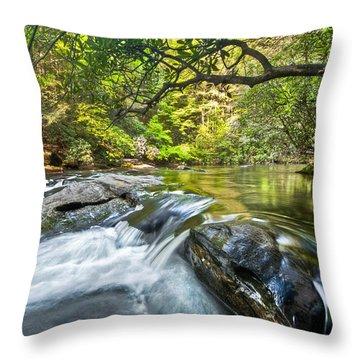 Forest Jewel Throw Pillow by Debra and Dave Vanderlaan