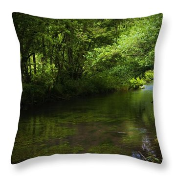 Forest River Throw Pillow by Svetlana Sewell