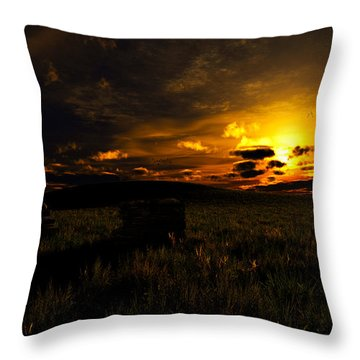 Forgotten Homestead... Throw Pillow
