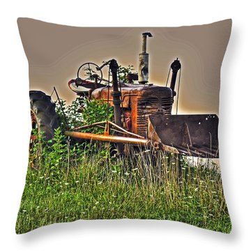 Throw Pillow featuring the photograph Forgotten IIi by William Fields