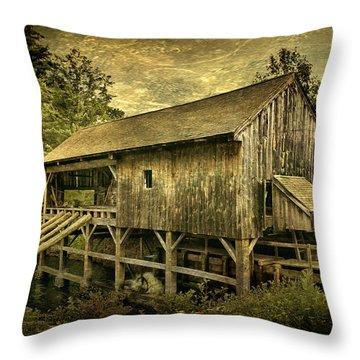 Forgotten Yesterdays Throw Pillow by Evelina Kremsdorf