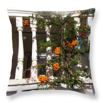 Fort Bayard Steps With Berries Throw Pillow by FeVa  Fotos