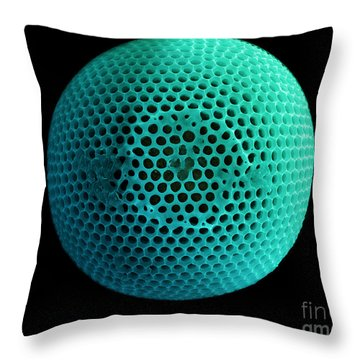 Fossil Diatom, Sem Throw Pillow by Ted Kinsman