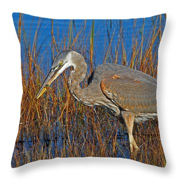 Found An Appetizer Throw Pillow by Mike Martin