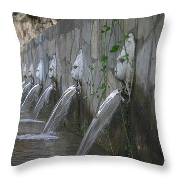 Throw Pillow featuring the photograph Fountain by David Gleeson