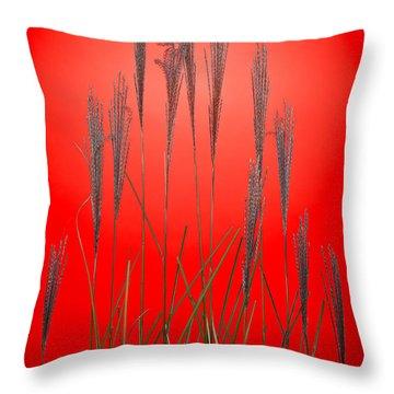 Fountain Grass In Red Throw Pillow by Steve Gadomski