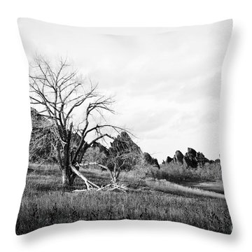 Fountain Valley In Black And White Throw Pillow