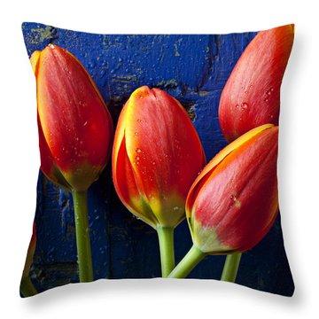 Four Orange Tulips Throw Pillow by Garry Gay