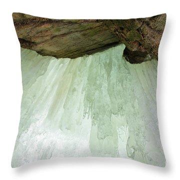 Franconia Notch State Park White Mountains Nh - Flume Gorge Throw Pillow by Erin Paul Donovan