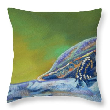 Frank's Turtle Throw Pillow by Tracy L Teeter
