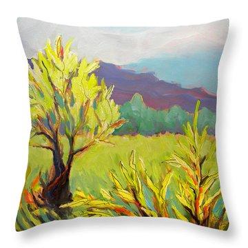 Frazier Wetland 2 Throw Pillow by Pam Van Londen