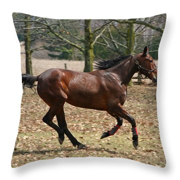 Throw Pillow featuring the photograph Free Spirit by Davandra Cribbie