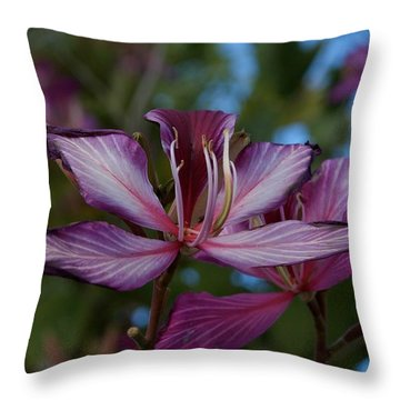 Freeze Throw Pillow by Joseph Yarbrough