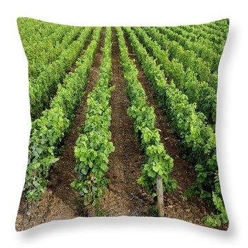 French Vineyard Throw Pillow by Bernard Jaubert