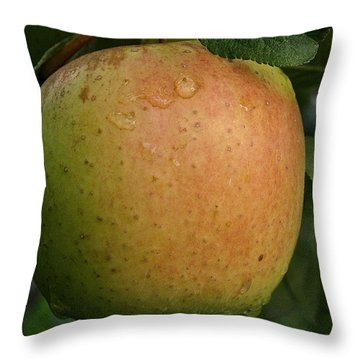 Fresh Apple Throw Pillow by Susan Herber