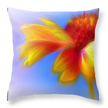 Throw Pillow featuring the photograph Fresh As A Daisy by Judi Bagwell