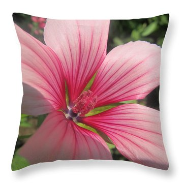 Throw Pillow featuring the photograph Fresh Pink by Tina M Wenger