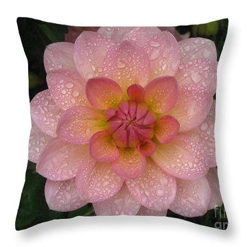 Throw Pillow featuring the photograph Fresh by Tina Marie