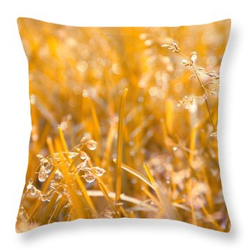 Freshness Throw Pillow by Aimelle
