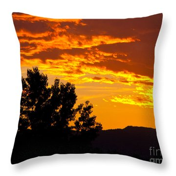 Friday Night Lights Throw Pillow by Dana Kern