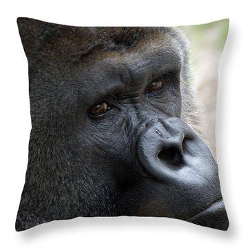 Friend Throw Pillow by Kat Besthorn