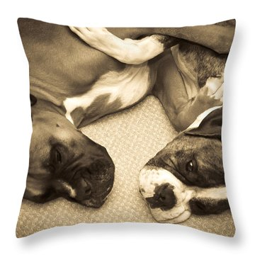 Friendship Embrace Throw Pillow by DigiArt Diaries by Vicky B Fuller