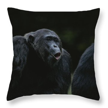 Gombe National Park Throw Pillows