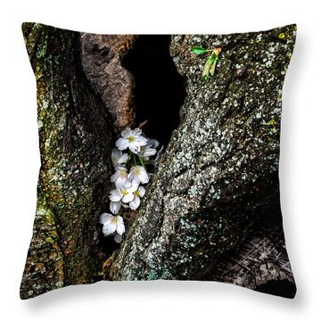 From The Heart Throw Pillow by Christopher Holmes