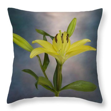 From The Heart Throw Pillow by Steven Richardson