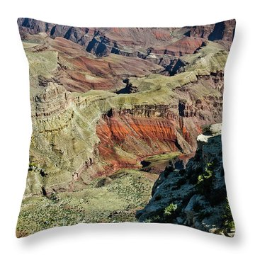 Throw Pillow featuring the painting From Yaki Point 6 Grand Canyon by Bob and Nadine Johnston
