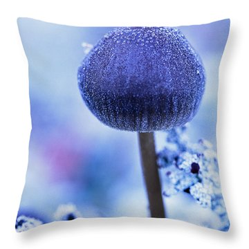 Frost Covered Mushroom, North Canol Throw Pillow by Robert Postma