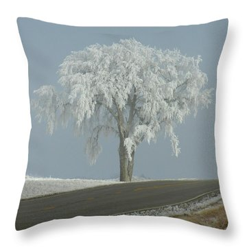 Throw Pillow featuring the photograph Frost On The Big Tree  by Penny Meyers