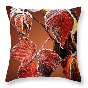Throw Pillow featuring the photograph Frosted Leaves by Judy  Johnson