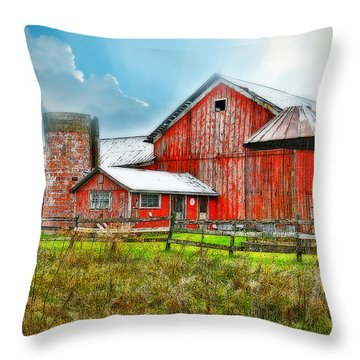 Throw Pillow featuring the photograph Frosted by Mary Timman