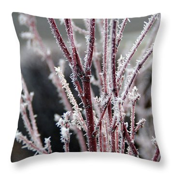 Frosty Coral Maple Throw Pillow by Mick Anderson