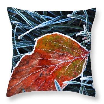 Frosty Leaf Throw Pillow by Elena Elisseeva
