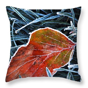 Icy Leaves Throw Pillows