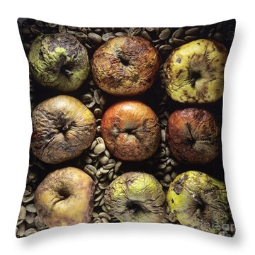 Frozen Apples Throw Pillow by Bernard Jaubert