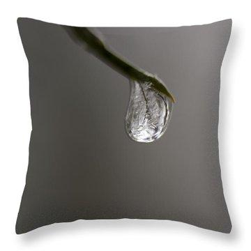 Frozen Dew Drop Throw Pillow