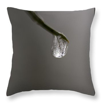 Frozen Dew Drop Throw Pillow