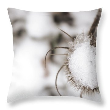 Throw Pillow featuring the photograph Frozen Plant by Lenny Carter