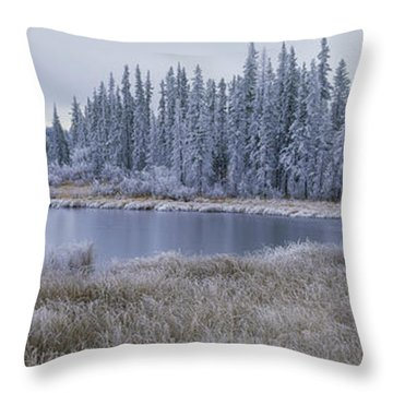 Frozen Swampland, Near 100 Mile House Throw Pillow by David Nunuk