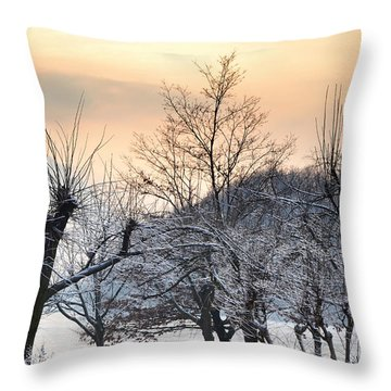 Frozen Trees Throw Pillow by Mats Silvan