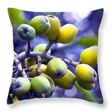 Sicilian Fruits Throw Pillow