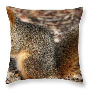 Throw Pillow featuring the photograph Fruity Squirel by Elizabeth Winter