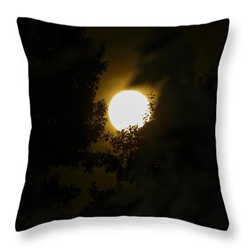 Full Moon Throw Pillow by Ester  Rogers
