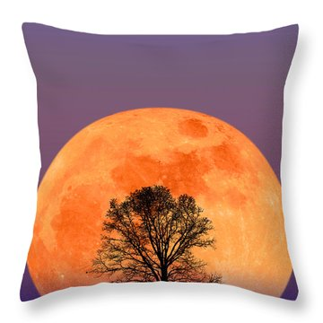 Full Moon Throw Pillow by Larry Landolfi and Photo Researchers