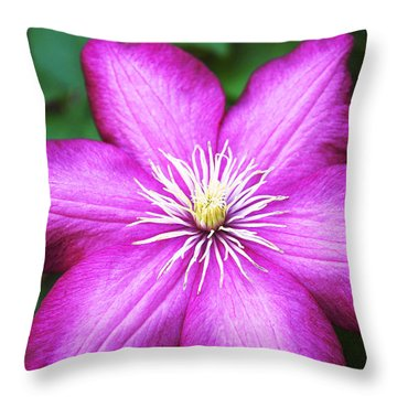 Full On  Throw Pillow by Bob and Nancy Kendrick