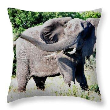 Furious Bull Throw Pillow by Bruce W Krucke
